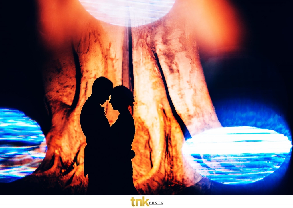 Redondo Beach Historic Library Wedding Photos Redondo Beach Historic Library Wedding Photos Redondo Beach Historic Library Wedding Photos | Hayley and Tibor TNK Photo Dot Com Tibor and Hayley Wedding 103